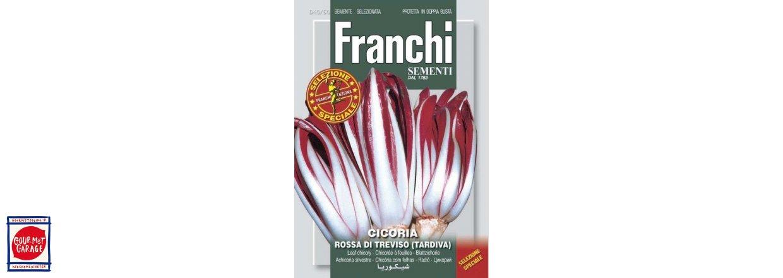 Frötrender - Radicchio - Italiens vintergrönsaker