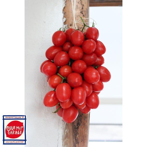 Tomat Grappoli d'Inverno