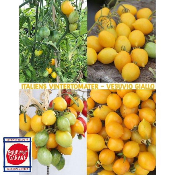 Tomat Vesuvio giallo (Peardrops)