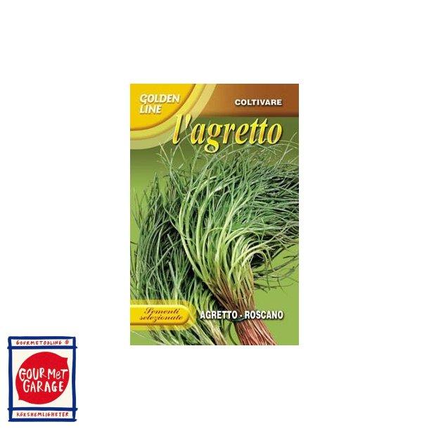 Agretti - Roscano (Salsola Soda)