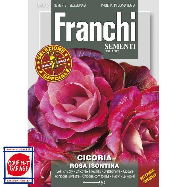 Cicoria Rosa Isontina