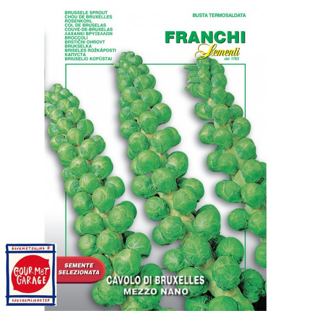 Brysselkål grön (Cavolo Bruxelles mezzo nano)