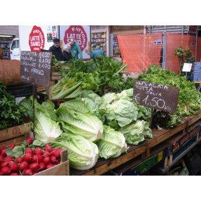 Salat & Radicchio & Rucola & Endivie