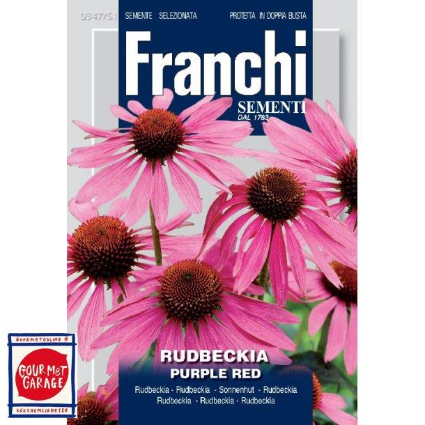 Rudbeckia/Solhatt Purple Red