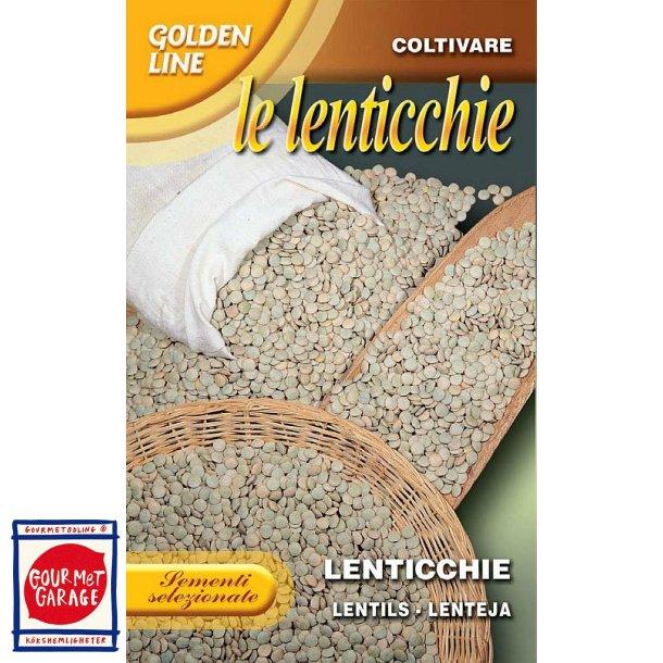 Linser (Lenticchie) - Lens culinaris