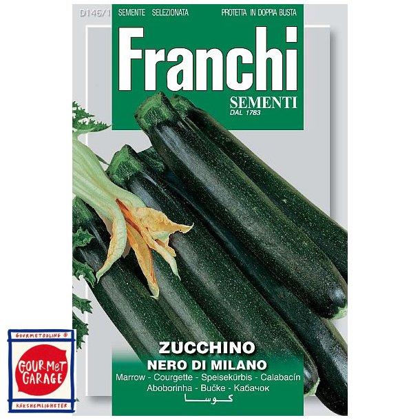 Zucchino Nero di Milano
