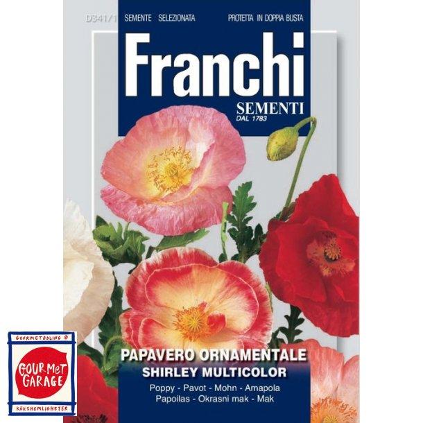 Vallmo Shirley multicolor - underbar mix av vacker vallmo